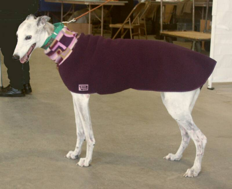 Ice is wearing a plum coat, size medium.